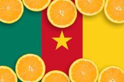 Kamerunflagga i citrusfruktskivahorisontalram arkivbild