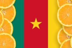 Kamerunflagga i vertikal ram för citrusfruktskivor royaltyfria bilder
