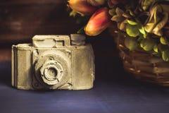 Kamery robić biały i szary gips obraz royalty free