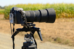 Kamery Tripod Zdjęcie Stock