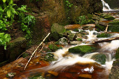 "KamieÅ ""czyk, water, stroom, stenen, bezinningen, aard Stock Fotografie"