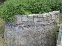Kamień ściany zieleni lasu natura Zdjęcie Stock