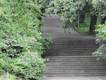 Kamień ściany zieleni natury lasowi schodki Fotografia Royalty Free