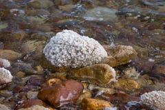 Kamień pełno medyczna sól od Nieżywego morza Zdjęcie Stock