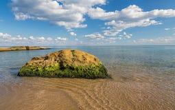Kamień przerastający z mech w morzu fotografia stock