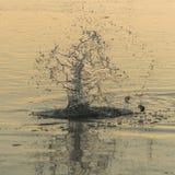 Kamień w wodnych pluśnięciach Fotografia Royalty Free