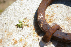 Kamień z starym ośniedziałym metalem Zdjęcie Stock