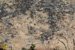 Kamień, zakrywający z mech zdjęcia stock