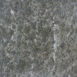 kamień. Zdjęcia Stock