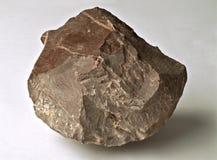kamień Zdjęcia Stock