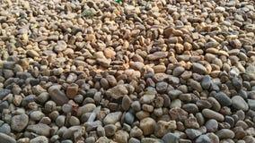 kamień Zdjęcia Royalty Free