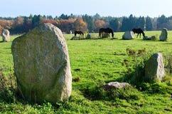Kamień i konie Obrazy Royalty Free