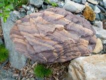 Kamień w lasowych Ogromnych brukowach zdjęcia royalty free