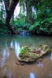Kamień w wodzie Fotografia Royalty Free