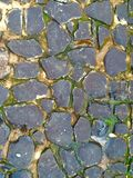 Kamień ziemia zdjęcie stock