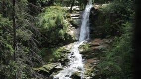 Kamienczyk waterfall stock video