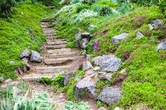 Kamieniści schodki w zielenieją ogród zdjęcia royalty free