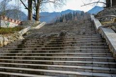 Kamieni kroki Zdjęcie Royalty Free