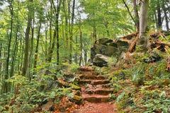 Kamieni kroki na lasowej ścieżce prowadzi Bucina punkt obserwacyjny przy początkującą jesienią w zachodniej cyganerii Fotografia Royalty Free