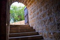 Kamieni kroki prowadzą do łukowatego wejścia piwnica Zdjęcia Stock
