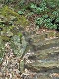 Kamieni kroki przy obwieszenie skały stanu parkiem Zdjęcia Royalty Free