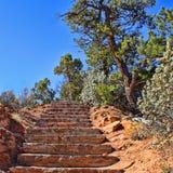 Kamieni kroki w aCanyon Zdjęcia Stock