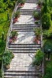 Kamieni kroki z kwiatami Obraz Royalty Free
