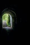 Kamienia i mech Archway ścieżka Zdjęcia Royalty Free