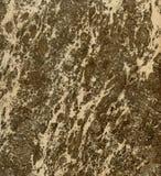 kamienia koloru marmuru wielo- cegiełki kamień Fotografia Stock