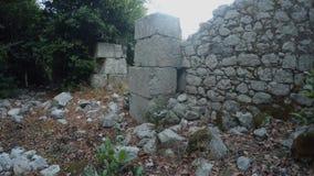 Kamieniarstwo ampuła ciosający kamienie przerastający z lasami antyczny miasto zbiory