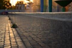 Kamieniarstwo miasto kwadrat wystawia w lustrzanej powierzchni fontanny ` s rama Zdjęcie Royalty Free
