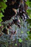 Kamienieć Dobrze Macierzystą Shiptons jamę Knaresborough Zdjęcie Stock