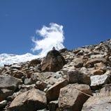 kamienie górskie Fotografia Stock