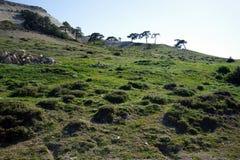 Kamienie i góra Obrazy Royalty Free