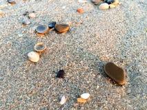 Kamienie na piasku Zdjęcie Royalty Free