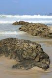 Kamienie na plaży Zdjęcie Royalty Free