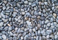 kamienie otoczaków kamienie Obraz Royalty Free