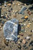 Kamienie przy plażą Fotografia Royalty Free