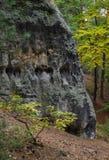 Kamienie w drewnach Fotografia Royalty Free