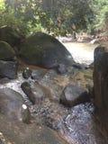 Kamienie w Namtokphlio parku narodowym zdjęcia stock