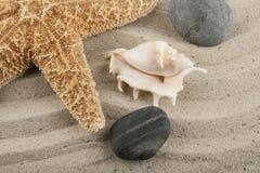 Kamienie w piasku Obrazy Stock