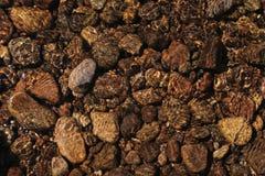 Kamienie w rzece zdjęcie stock