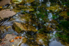 Kamienie w wodzie Obraz Royalty Free