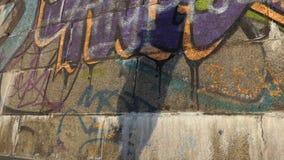 Kamienista ściana z dancingowym cieniem na nim w lecie w mo zdjęcie wideo