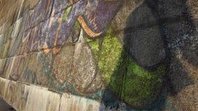 Kamienista ściana z dancingowym duchem na nim w lecie w mo zdjęcie wideo