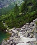 Kamienista ścieżka chwytająca przy dennym oka jeziorem, Polska obraz royalty free