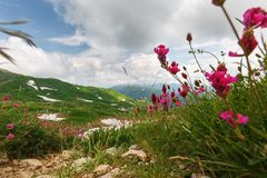 Kamienista ścieżka góry przez przepustki Fisht-Oshten zdjęcie stock