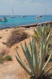 Kamienisty wybrzeże i jachty w podpalanym Cala Xinxell Mallorca, Hiszpania Zdjęcia Royalty Free