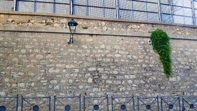 Kamienna ściana drogą z poręczami i zielonymi roślinami zdjęcia royalty free