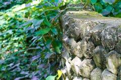 Kamienna ściana w lesie obrazy royalty free